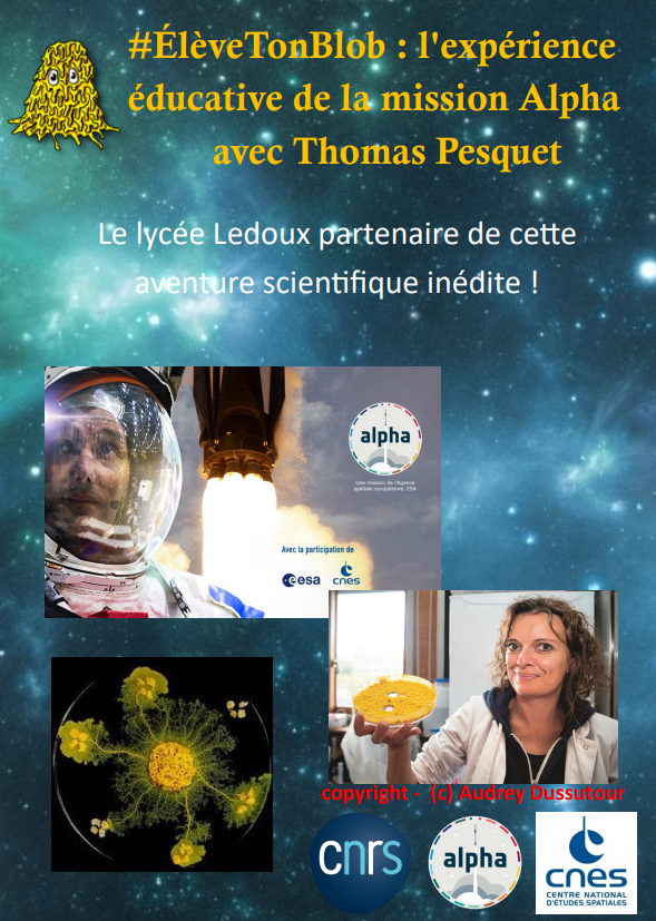 affiche-lycee.PNG